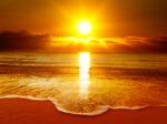 The sunshine nutrient - Vitamin D