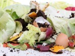 How much food do you waste every day?