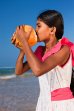 Portrait of Sri Lankan young girl with coconut